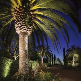 Kichler Landscape Palm Path